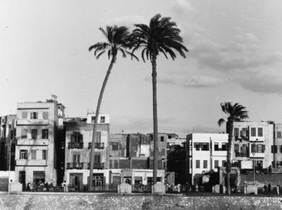 Il Cairo, 1955