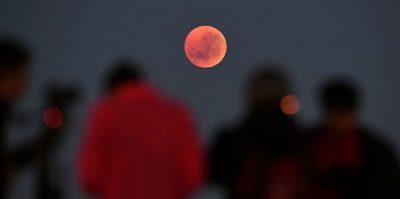 Stanotte ci sarà un'eclissi totale di Luna