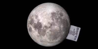 Il cotone sulla Luna è morto