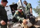 In Messico si produce sempre più droga