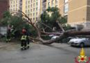 A Roma, in viale Mazzini, un pino è caduto schiacciando tre automobili: due persone sono state ferite, una in modo grave