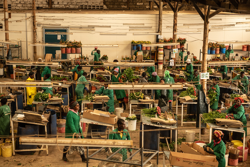 Factory Tour RCM: una gamma completa di macchine ... - Vimeo