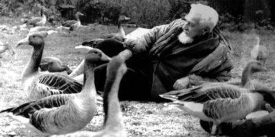 Konrad Lorenz cambiò il modo in cui guardiamo gli animali