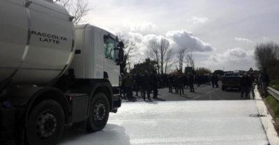 Le proteste degli allevatori sardi per il prezzo del latte di pecora