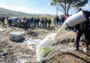 In Sardegna alcuni uomini hanno assaltato un camion cisterna costringendo l'autista a rovesciare tutto il latte che trasportava