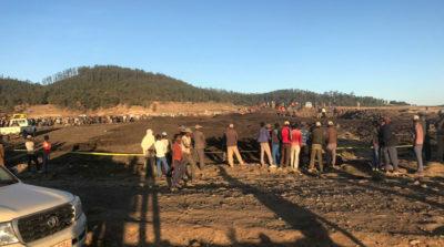 Le 157 persone a bordo dell'aereo caduto in Etiopia sono morte