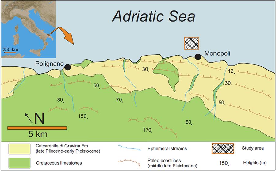 La posizione della barriera corallina trovata al largo di Monopoli in Puglia