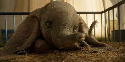 """""""Dumbo"""" è più no che sì, secondo i critici"""