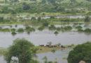 Almeno 100 persone sono morte negli ultimi giorni per le conseguenze delle forti piogge in Malawi, Mozambico e Sudafrica
