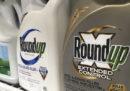 Un tribunale americano ha stabilito che l'erbicida Roundup è tra i fattori che hanno causato un tumore in una persona
