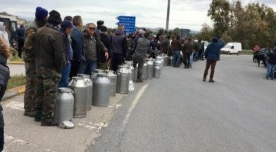 Gli allevatori e gli industriali sardi hanno infine raggiunto un accordo sul prezzo del latte, fissato a 0,74 euro al litro