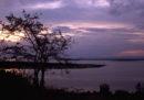 Una turista americana e il suo autista sono stati rapiti mentre visitavano un parco nazionale dell'Uganda