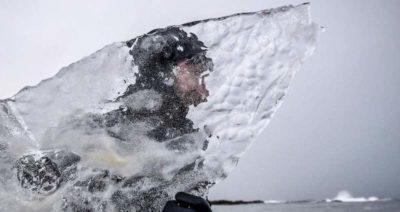 Ovviamente c'è chi sta provando a fare surf su una tavola di ghiaccio