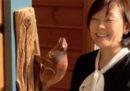Il nuovo castoro battiporta di Shinzo Abe