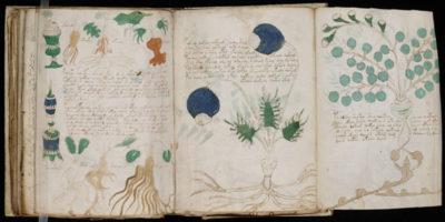 No, il manoscritto Voynich non è stato decifrato