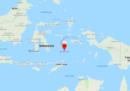 C'è stato un terremoto di magnitudo 7,3 nel Mar di Banda, in Indonesia