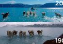 La foto dei cani da slitta in acqua in Groenlandia, già 35 anni fa