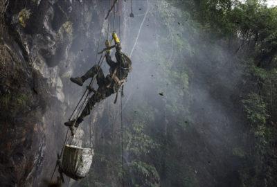Raccogliere miele da traballanti scale di corda appese a pareti a strapiombo