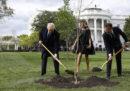 Emmanuel Macron ha detto che manderà a Donald Trump un nuovo albero, dopo che l'altro è morto