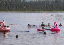 In Alaska le temperature massime hanno raggiunto nuovi record