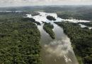 Negli ultimi tre mesi è stata disboscata una superficie di Amazzonia molto maggiore rispetto agli scorsi anni