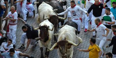 La corsa dei tori di Pamplona è diventata troppo sicura?