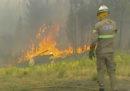 Da sabato ci sono vari incendi boschivi nel centro del Portogallo
