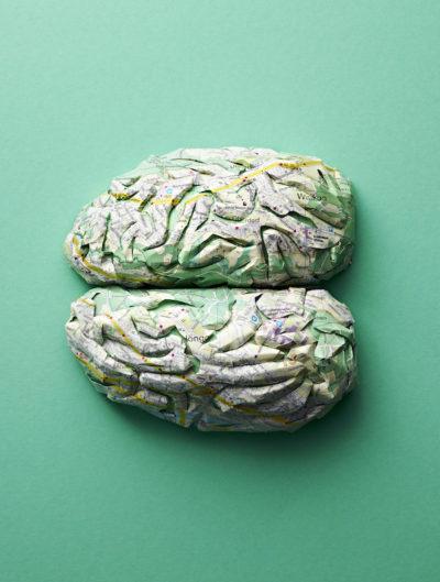 Cuore, cervello e polmoni fatti di mappe