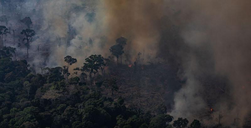 Il Brasile ha rifiutato gli aiuti del G7 per l'Amazzonia