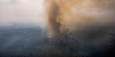 Le ultime sugli incendi in Amazzonia