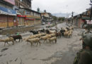 Il coprifuoco imposto dal governo indiano sulla capitale del Kashmir è stato allentato