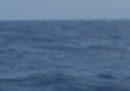 Una barca di migranti è naufragata al largo della Libia: 60 persone sono sopravvissute, molte altre sono morte