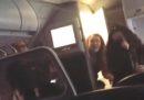In America un pipistrello è finito nella cabina di un aereo