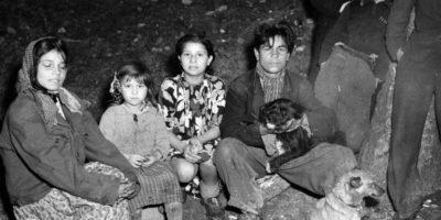 Cosa fu il genocidio dei rom