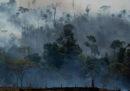 Esiste un punto di non ritorno per l'Amazzonia?