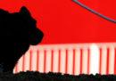 In Norvegia stanno morendo decine di cani per una misteriosa malattia