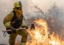 In California è stato dichiarato lo stato di emergenza per i grossi incendi