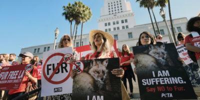 In California non si potranno più produrre e vendere pellicce a partire dal 2023