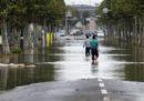 Il numero dei morti per il tifone Hagibis in Giappone è salito a 74