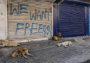 Mercoledì 5 persone sono state uccise in Kashmir, il numero più alto da quando l'India gli ha revocato l'autonomia
