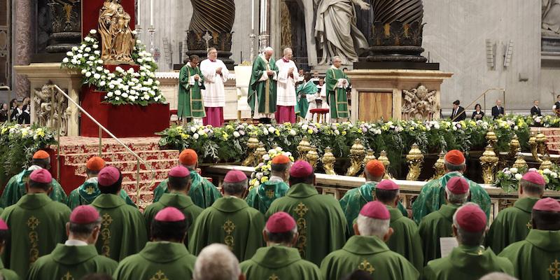 Risultato immagini per sinodo sull'amazzonia