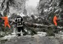 In Alto Adige ci sono grossi problemi con la neve