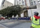 È meglio comprare un albero di Natale vero o uno finto?
