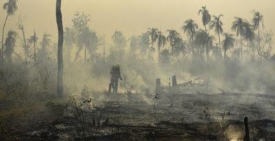 Amazzonia: ucciso un altro indios ''Guardiano della foresta''