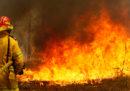 Almeno tre persone sono morte per gli incendi nel Nuovo Galles del Sud, in Australia