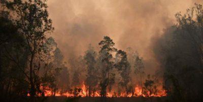 Le foto degli incendi in Australia