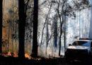 Nel Nuovo Galles del Sud, in Australia, c'è un numero di incendi «senza precedenti»