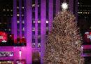 Come si diventa l'albero di Natale più famoso del mondo
