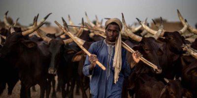 Il reportage di Marco Longari tra i pastori del Niger