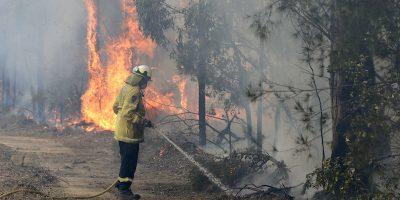 In Australia, 24 persone – e non 183 – sono state accusate di aver deliberatamente appiccato incendi nelle ultime settimane
